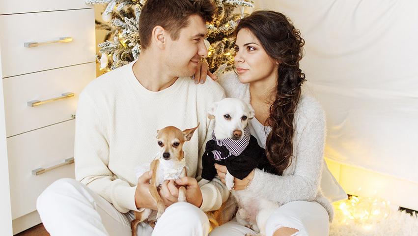 couple with pets - 3 Wege wie Haustiere für die Gesellschaft wichtig sind